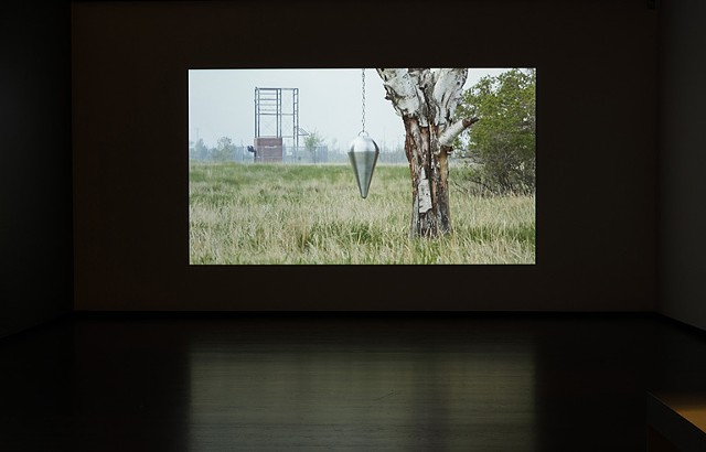 reading wild lands, installation view