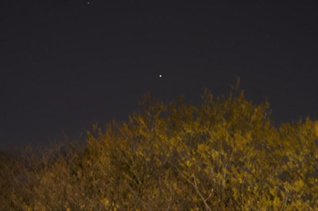Star Photograph I (Capella)