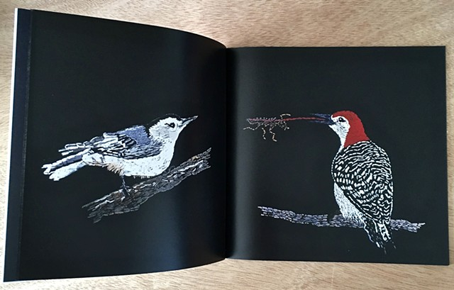 BIRD BOOK Photo Book of Birds Hand Embroidered on Black Cloth