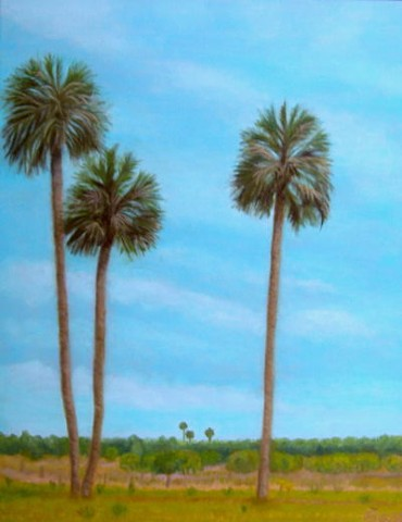 Micanopy, palm trees, Florida