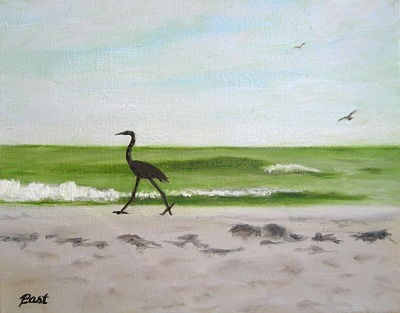 Bird strutting on beach