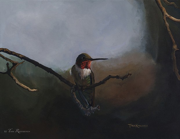 """Broad-Tailed Hummingbird"" Sold"