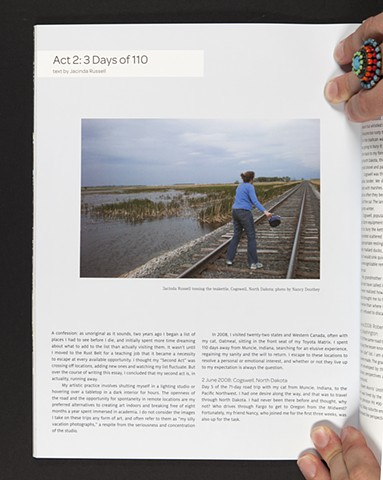 """Act 2: 3 Days of 110."" Art Lies, Issue 61, Spring 2009"