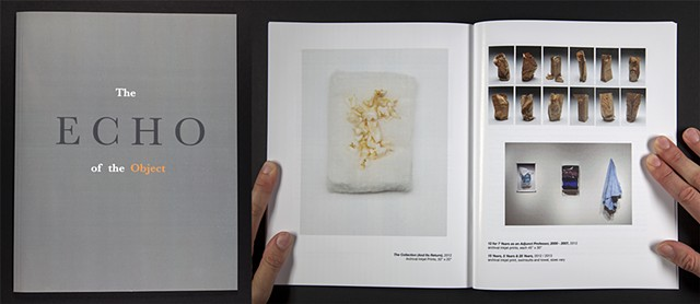 """Echo of the Object"" with an essay by Lara Kuykendall and an interview by Natalie Phillips, Published by Ball State University School of Art, 2014"