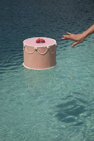 Nine Fake Cakes & Nine Bodies of Water, 2010 - 2011