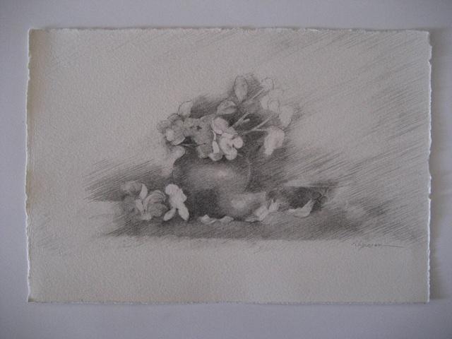 Blossom Window