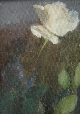 Nina's White Rose