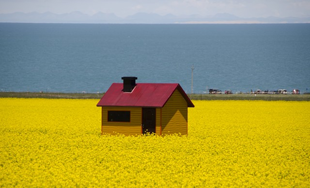 Qinghai Lake Photo Opportunity