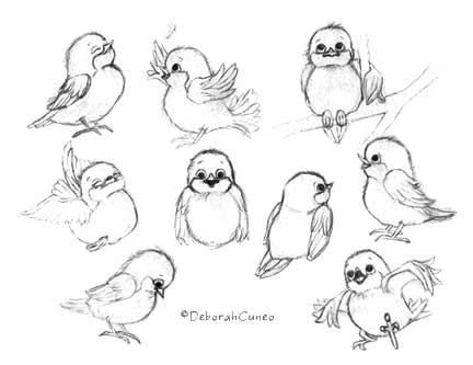 Bird character Sketches