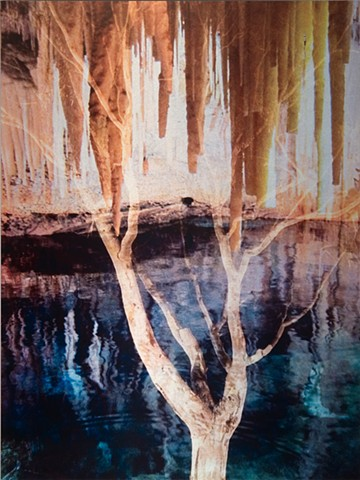 Photomontage collage metal photograph infused on to aluminum of spiritual mystical tree in grotto and reflective water by Brandy Eiger Mixed Media artist
