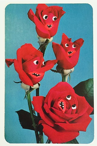 The Angry Roses, 1