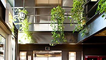 Atrium Entry