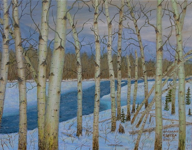 A painting in Fernie, B.C. of winter-time of aspen trees painted from a trail over the partly frozen Elk River.
