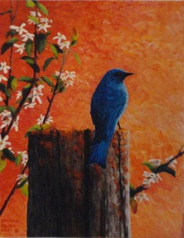 Painting of a Mountain Bluebird in the Canadian Rocky Mountains.