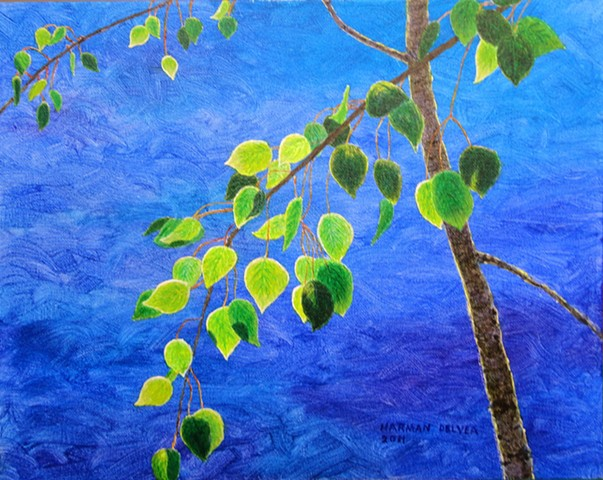 A paining in blue and green, spring aspen leaves and blue sky, Fernie, B.C.