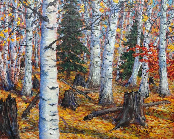 A painting of golden-yellow aspen leaves which totally carpet the ground in the fall / autumn in the Elk Valley, near Fernie, B.C.