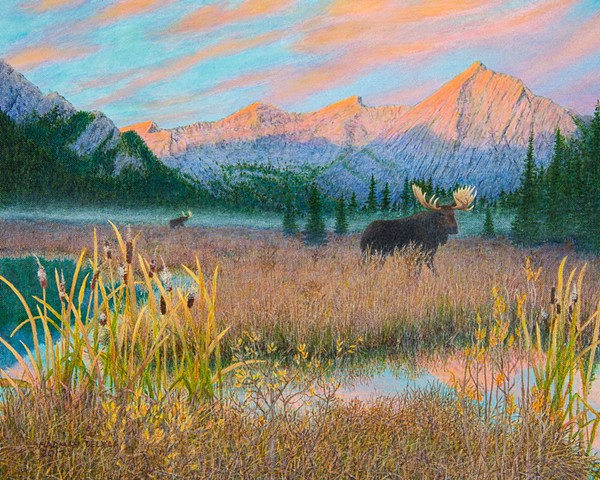Moose painting, Elk Lakes Provincial Park paintings, Wildlife paintings, landscape paintings, Canadian Rocky Mountains paintings