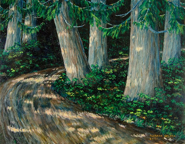 A painting of the Old Growth Trail beside the road to Island Lake near Fernie, B.C., showing the ancient Western Red Cedar trees which are about 800 years old.