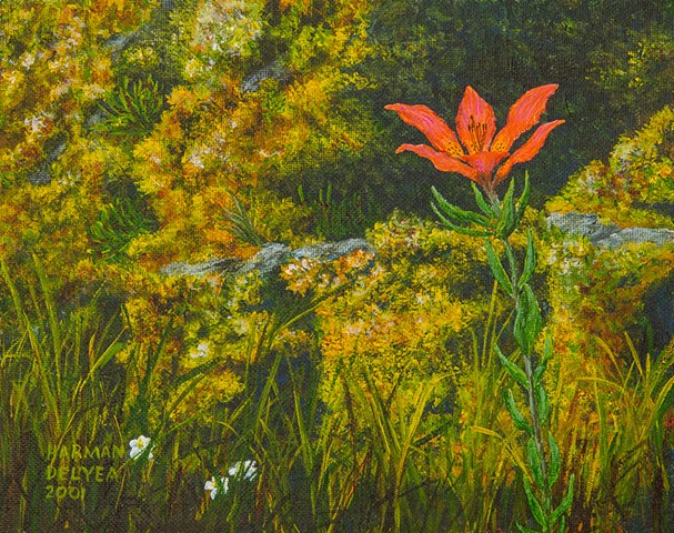 A painting of a wild orange-red lily growing on the slopes of the Rocky Mountains in B.C.