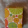 Citrus Delight Travel Book