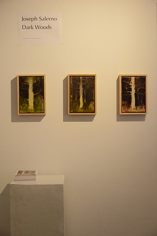 Dark Woods Gallery Installation