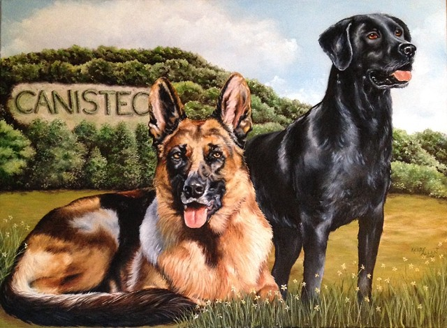 shelter dogs, German shepherd, black lab, Labrador Retriever, Canisteo