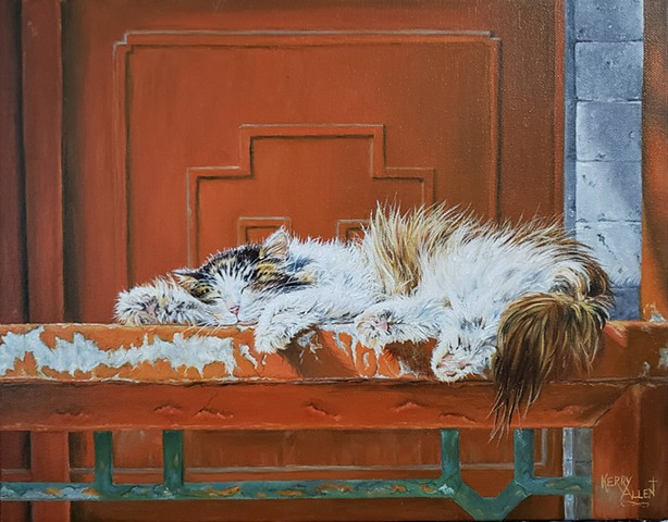 cat, sleeping cat, cat nap, oil painting, cats, realism