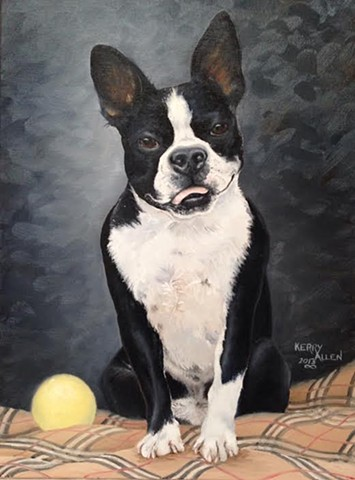 Boston Terrier, pet portrait, dog portrait, dog painting