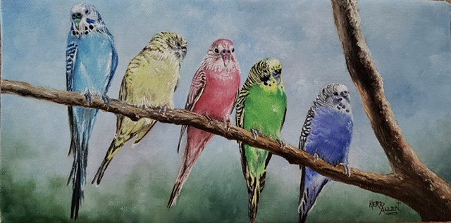 parakeets, birds, oil painting, wildlife, colorful birds