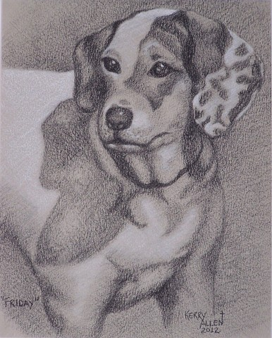 charcoal, dog, pet portrait, Friday