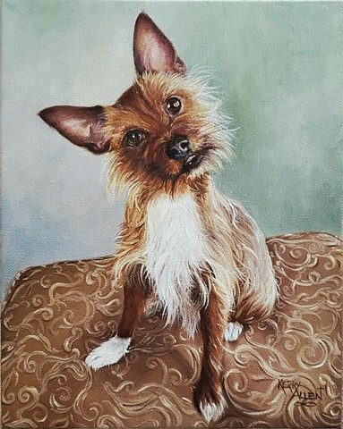 dog portrait, pet portrait, rescue dog, rat terrier, yorkie, animal art