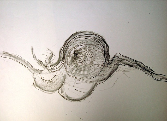 Root Snail