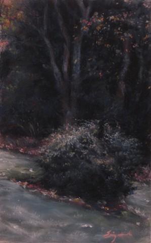 Sandpaper Landscape
