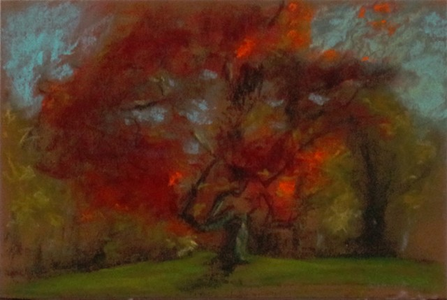 Red tree study