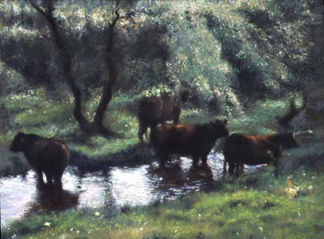 Cows In A Stream 2