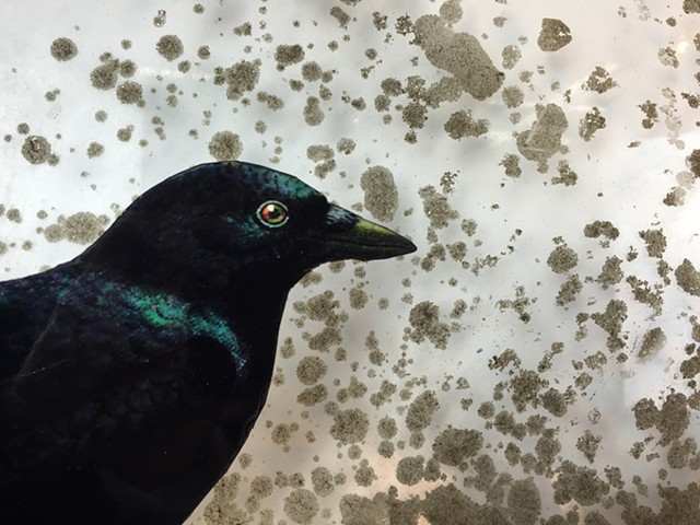 "Water Kerner ""Corvus Constellation""  (DETAIL) painting"