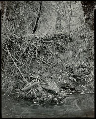 Scott Creek #92-55