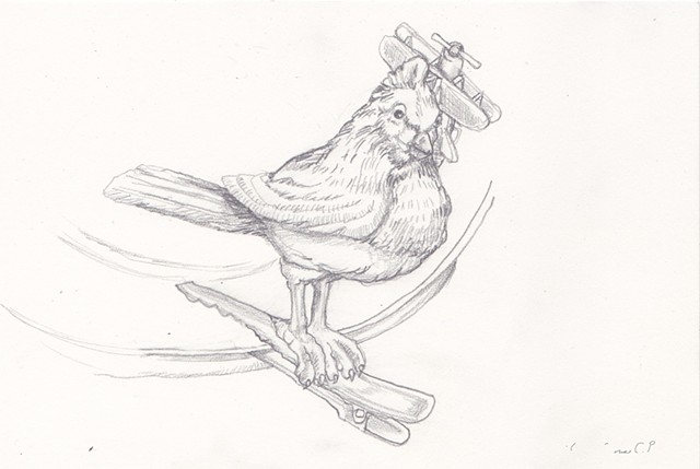 pencil on paper, Art, Fine Arts, Airplane and Bird