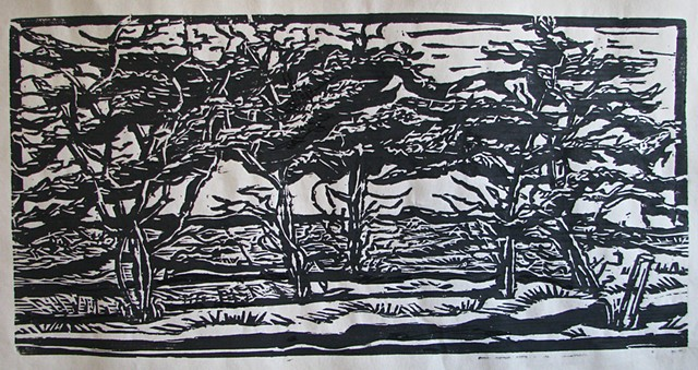 woodcut, nantucket, landscape