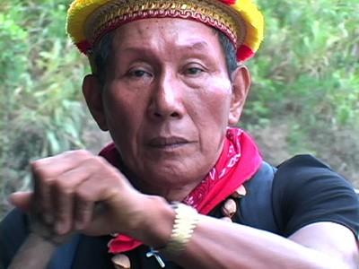 Ayahuasca, Cofan,