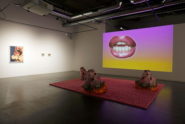 (007 Grad School Words 1 3:20 - 4:06) Who Do You Think You Are I Am installation view