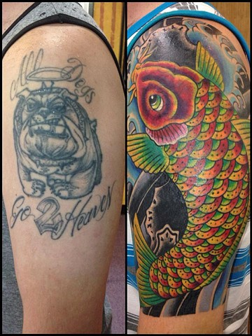 Koi Cover-Up