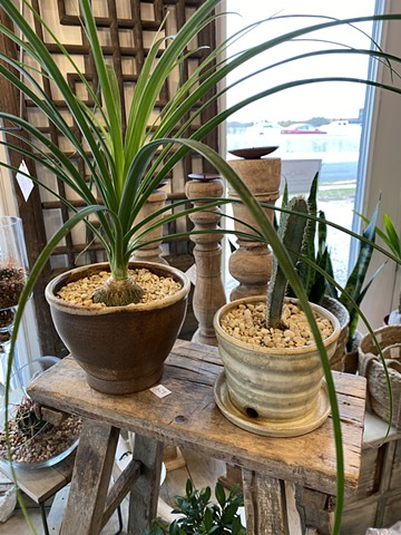 Plant Pots for Sale at Wildflowers Boutique Corpus Christi