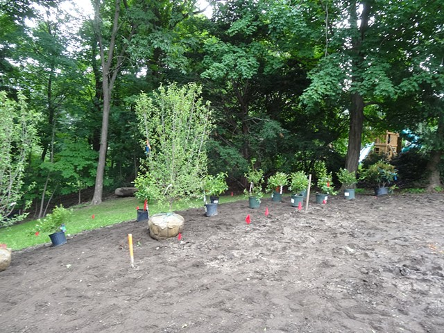 Back border during planting