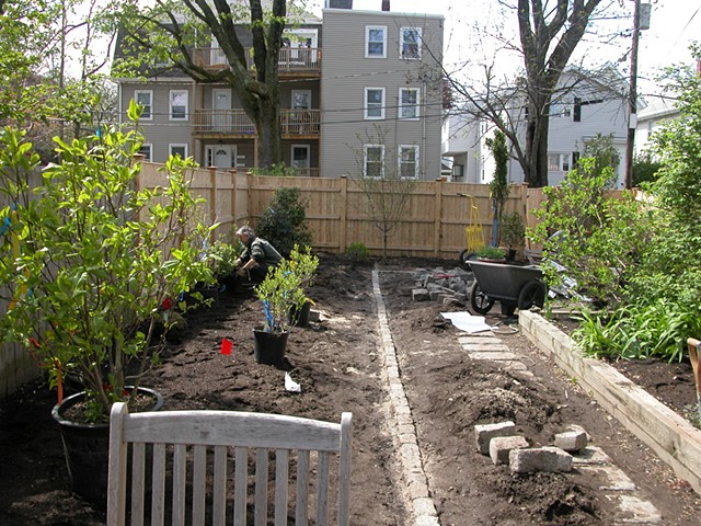 Cambridge garden during planting