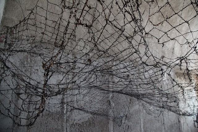 Dimitra Skandali, Contemporary Art, Aegean Sea, Paros, Greek Art, San Francisco art, seaweed, Santorini, Alexa Kusber, 1st International Santorini Biennial