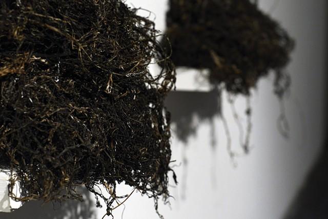 Folded seaweed nets as speakers