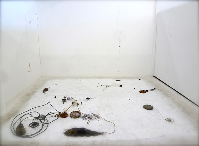 Dimitra Skandali, San Francisco Art Institute, Contemporary Art, seaweed, sea grass, San Francisco art, Pacific Ocean, Aegean Sea, Alyki, Paros, David Janesko, found objects