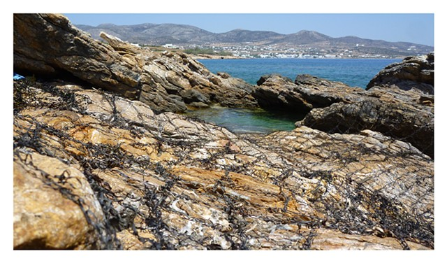 Dimitra Skandali, Contemporary Art, Aegean Sea, Paros, Greek Art, San Francisco art, seaweed, Alyki