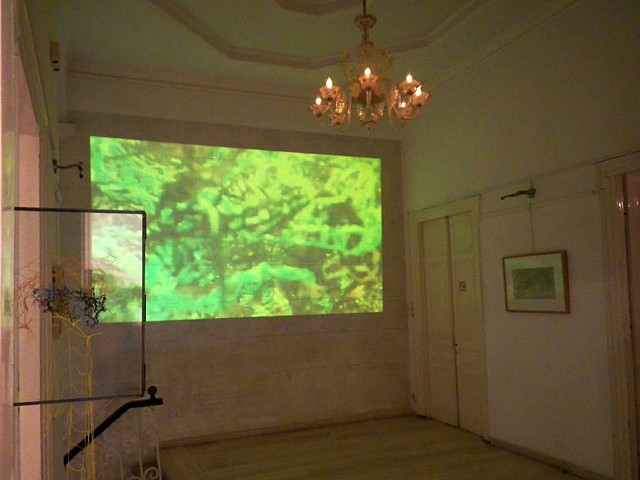 "projection of the video ""seas... with two more pieces: ""nets"" on the left, (mixed media) 2016, and ""untitled"" on the right, (etching) 2009"